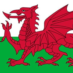 St David's Day - Feest in Wales